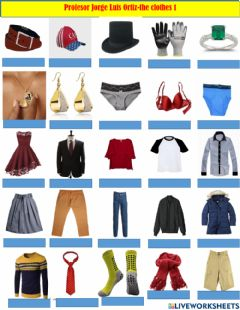 Interactive worksheet THE CLOTHES