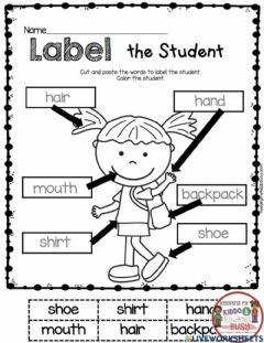 Interactive worksheet Label the student