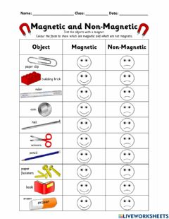 Interactive worksheet Magnetic or Non-Magnetic WS