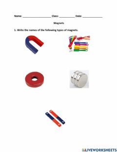 Interactive worksheet Magnets Worksheet
