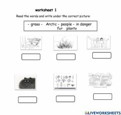 Interactive worksheet Match the word with the correct picture