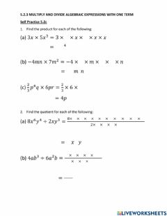 Interactive worksheet 5.2.3 Multiply and Divide Algebraic Expressions with One Term