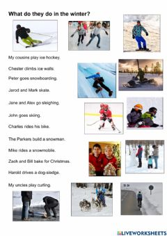 Interactive worksheet What do they do in winter