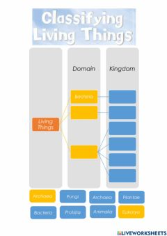 Interactive worksheet Classification of Living Things - Domains and Kingdoms
