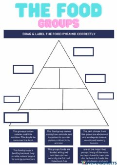 Interactive worksheet The Food Groupd