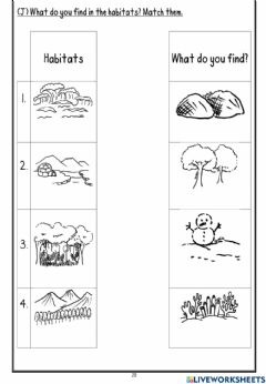 Interactive worksheet What do you find in each habitat?