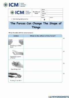 Ficha interactiva What can we use to measure the forces