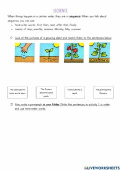 Interactive worksheet A growing plant