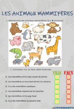 Interactive worksheet Les animaux mammifères