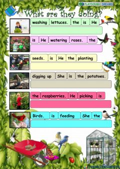 Interactive worksheet Put in order the sentences (Amazing Rooftops 4, Unit 6)