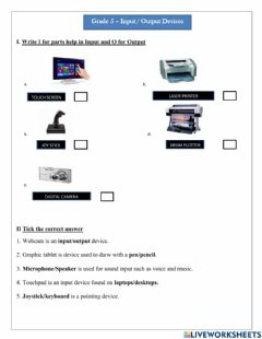 Interactive worksheet Input-Output Devices