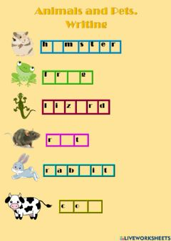Interactive worksheet Animals and pets