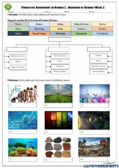 Ficha interactiva Branches of Science