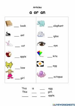 Interactive worksheet Indefinite article a-an