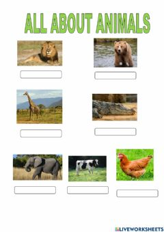 Ficha interactiva All about animals