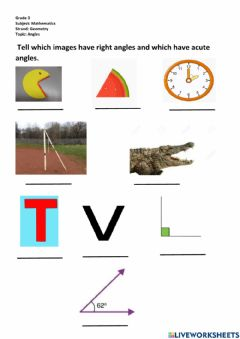 Interactive worksheet Acute or right angle worksheet