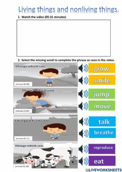 Interactive worksheet Living & nonliving things video activity