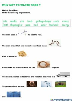 Interactive worksheet Why not to waste food?