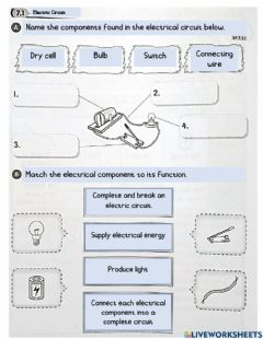 Interactive worksheet Year 2 electricity