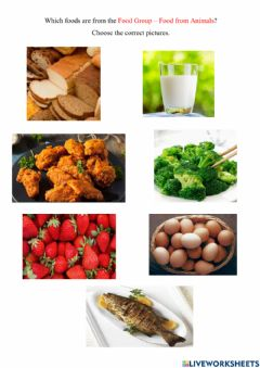 Interactive worksheet Food Groups - Food From Animals
