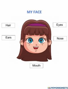 Interactive worksheet My face
