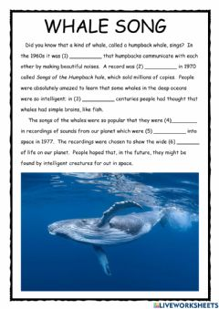 Interactive worksheet Whale Song PET Reader