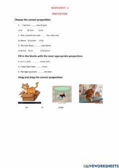 Interactive worksheet Place preposition