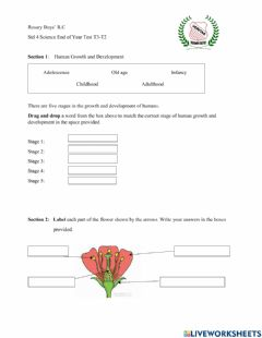 Interactive worksheet Science Test T3T2