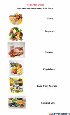 Interactive worksheet The Six Food Groups
