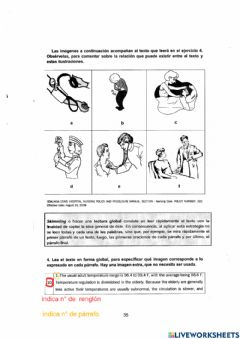 Interactive worksheet Vital signs reading and wordsearch