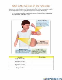 Ficha interactiva What is the function of nutrients?