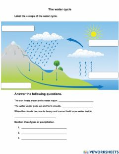 Ficha interactiva 4 Steps water cycle