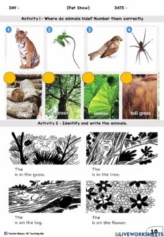 Interactive worksheet Pet Show (Number, Name the animals)