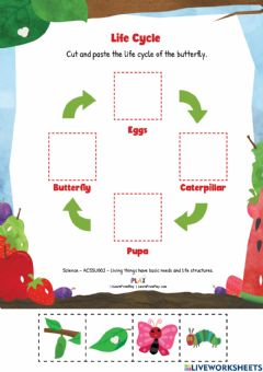 Interactive worksheet The Very Hungry Caterpillar - Life Cycle