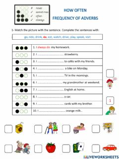 Interactive worksheet Adverb of frequency 1