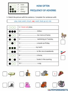 Ficha interactiva Adverb of frequency 2