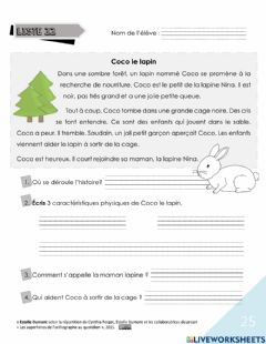 Interactive worksheet Lecture Coco