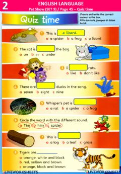 Interactive worksheet Pet Show - Revision