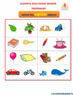 Interactive worksheet Select the suitable things