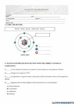 Interactive worksheet Atom and Evolution by Natural Selection
