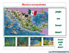 Interactive worksheet Ecosystems and animals of mexico