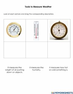 Interactive worksheet Tools to Measure Weather