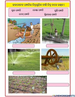 Interactive worksheet Science 8 1st CH