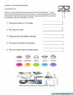 Interactive worksheet Types of Observations