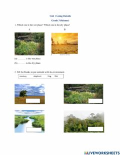 Interactive worksheet Going outside