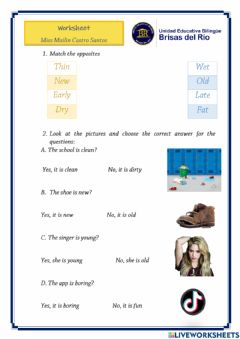 Interactive worksheet Adjectives and present of be