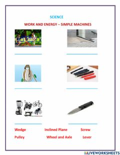 Interactive worksheet Work and Energy