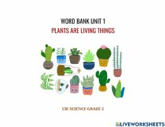Ficha interactiva Word bank unit 1 plants are living things - unit 1.2 plant parts