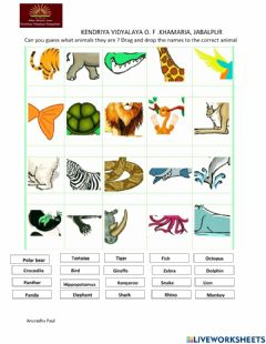 Ficha interactiva Guess the animal  !!