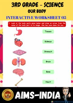 Interactive worksheet 3rd-science-ps05-our body